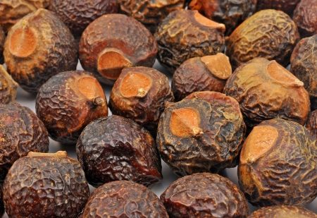 close up top view of soap nuts