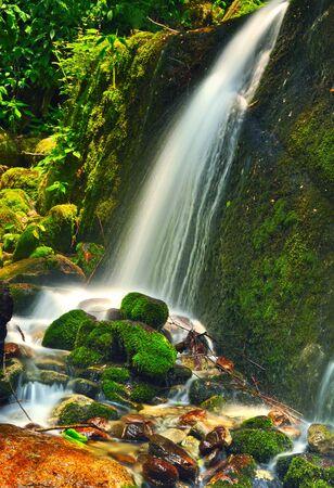 narrow stream of water fall Stock Photo - 15788192