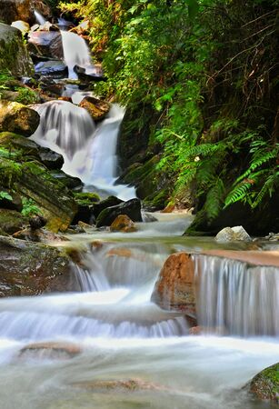 close up of small waterfall in aforest Stock Photo - 16571124