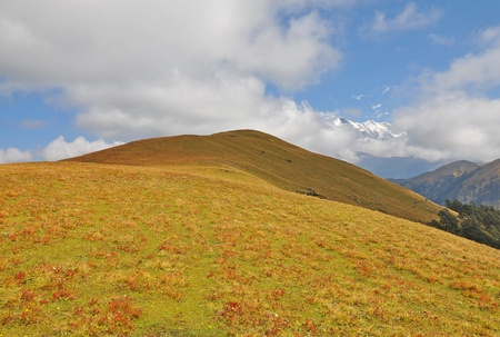 vast mountain slope with meadow