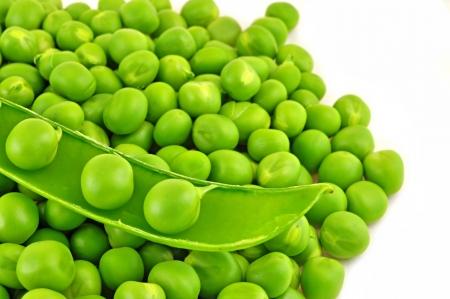 close up of split pod of sweet pea Standard-Bild