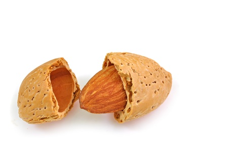 close up of open shell of almond isolated on white