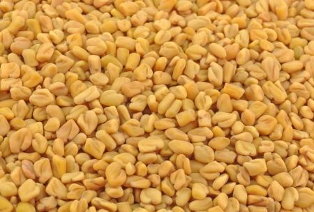 close up of pile of fenugreek seeds