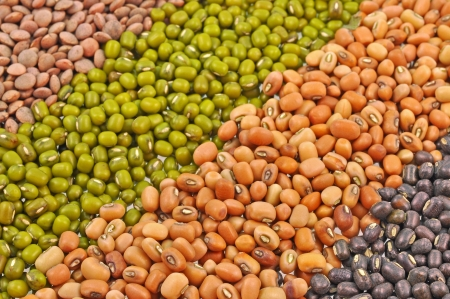 munggo: close up of seeds of pulses arranged in oblique manner