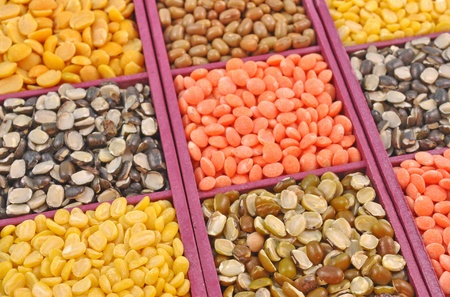 red gram: close up panel of split seeds of pulses