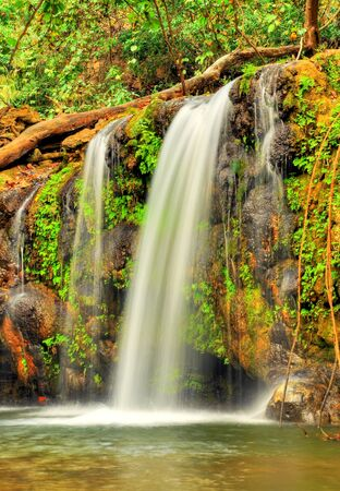 waterfall in dense forest Stock Photo - 16877389