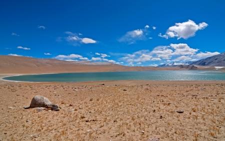 oval lake in barren mountain