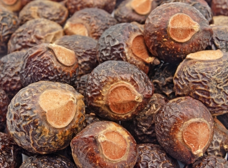 close up pile of of soap nuts