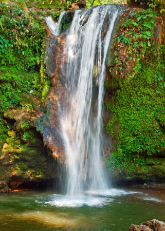 waterfall in Dense forest in Indian Himalaya Stock Photo - 18824669