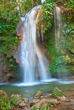 waterfall in dense forest Stock Photo - 18887174