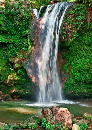 waterfall in a forest Stock Photo - 18887176