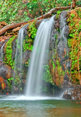 waterfall with fallen tree trunk  Stock Photo