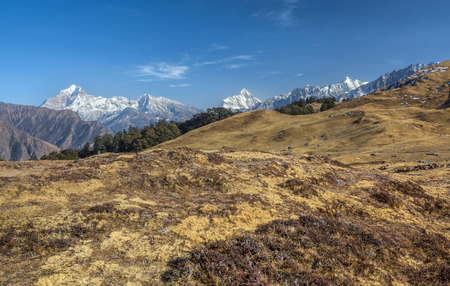vast open alpine grasslands in himalaya Stock Photo