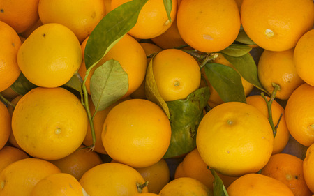 close up top view of fresh oranges Stock Photo