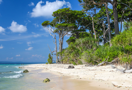 pristine corals: A beach at Laxmanpur, Neil Island, Andaman, India Stock Photo