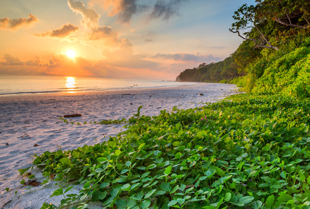 sunset at Radhan nagar Beach in havelock island, Andaman and Nicobar, India