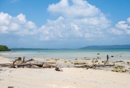 Vast Vijay Nagar Beach in havelock Island, India