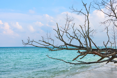 sea coast in Havelock Island, Andaman, India