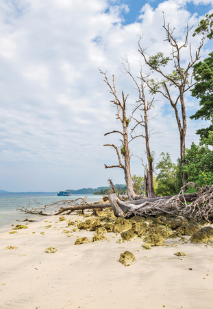 a portion of Elephant Beach in Havelock Island, Andaman, India