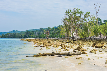 Vast rocky beach in Havelock Island India