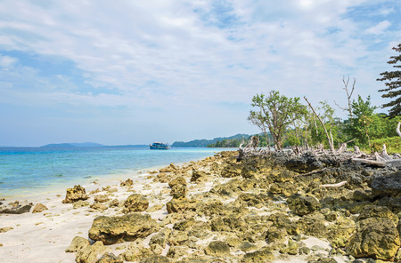 scattered coral rocks in Havelock Island, India Stock Photo