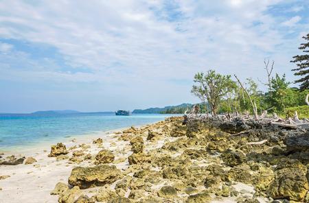 scattered coral rocks in Havelock Island, India Standard-Bild