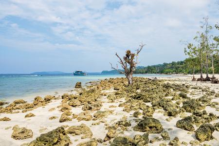 rocky shore at Havelock Island, Andaman and Nicobar, India