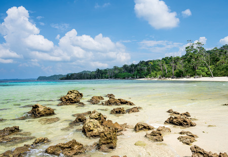 pristine corals: scattered rock at elephant Island, Havelock, Andaman and Nicobar, India