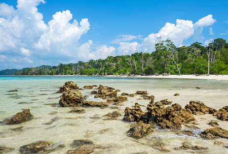 pristine corals: scene at Elephant Beach In Havelock, Andaman, India Stock Photo