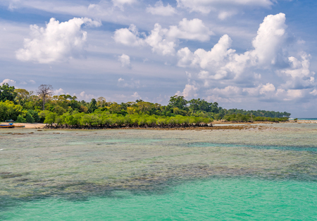 pristine corals: Scene at Bharatpur beach, Neil Island, Andaman, India Stock Photo