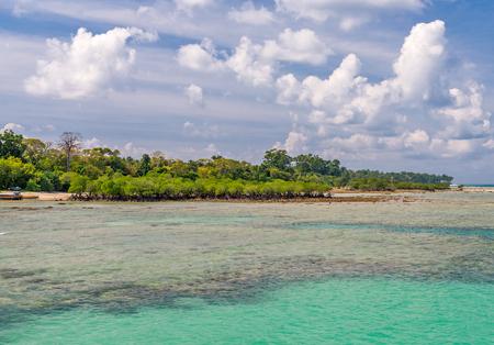 pristine coral reef: Scene at Bharatpur beach, Neil Island, Andaman, India Stock Photo