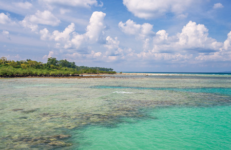 pristine coral reef: Turquoise colored water of sea in Neil Island,Andaman and Nicobar India Stock Photo