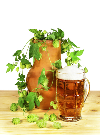 humulus lupulus: Beer still life. Glass of beer with flowers and leaves of hop (Humulus lupulus) in a clay pot on a wooden table. Isolated on a white .