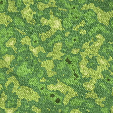hid: Marshy green camouflage texture background, digital illustration