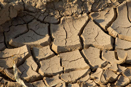 no: the earth cracked by a long drought