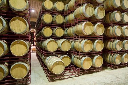 oenology: wine cellar