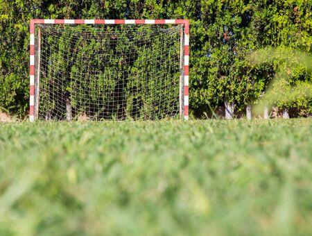 goalline: Soccer