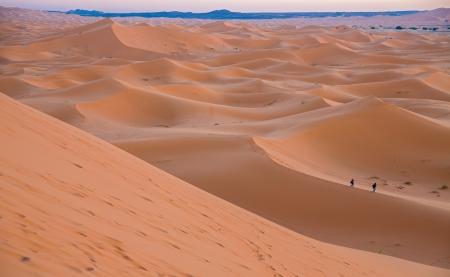 Skyline of dunes