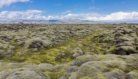 expansive: The expansive moss-covered lava fields and mountain in Iceland