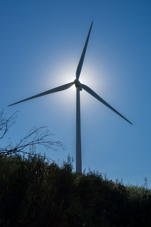 Backlit of Wind turbine and bush against sun and blue sky photo