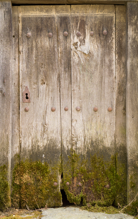 old wooden door: Entire old wooden door with moss and lock