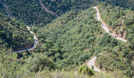 lonelyness: Top view of ascending mountain road with curves