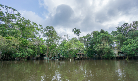 rural skyline: Amazon forest and wooden houses built for anaconda film Stock Photo