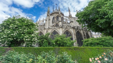 ''wide angle'': Wide angle of the rear view of the Notre Dame Cathedral, Paris, France Stock Photo