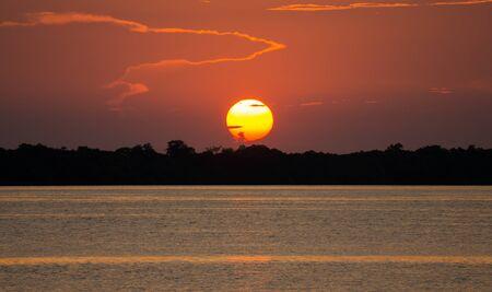 rio amazonas: Sun sobre el arbusto, la puesta del sol en el r�o Amazonas Foto de archivo