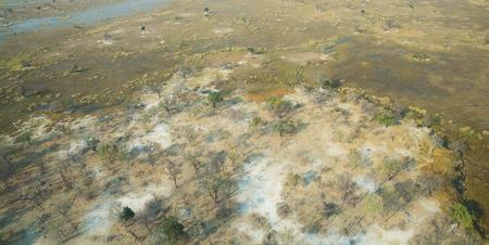 Okavango Delta: Aerial view of okavango delta