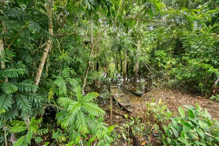 río amazonas: Vista amplia de Negro y canoas de madera abandonados en el r�o del Amazonas
