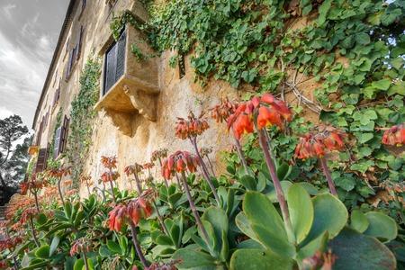 ''wide angle'': Wide angle view of vintaje Majorca traditional house with flowers Stock Photo