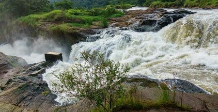 On top of Murchison Falls in Uganda