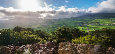 portugal agriculture: farm fields in the Terceira island, Azores
